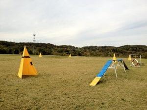 Nashville K-9 Field