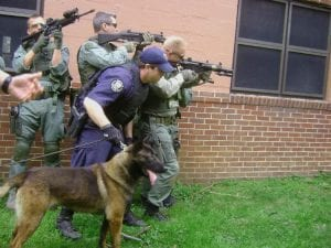 police-protection-dog-2