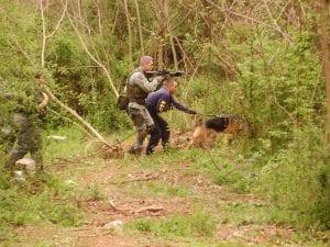 police-protection-dog-3