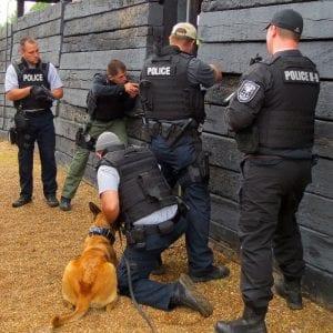 swat-dog