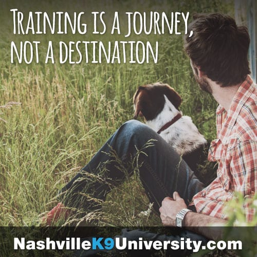 Nashville K9 University Ad